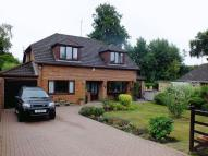 Detached home for sale in ROMAN ROAD, BASINGSTOKE...