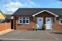 Semi-Detached Bungalow for sale in Ashton Drive, Bristol