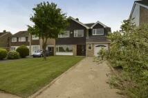 Detached property for sale in Park Way, Coxheath