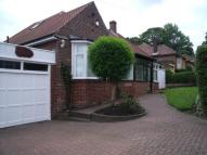 Bungalow to rent in Treen  Dunston Bank...