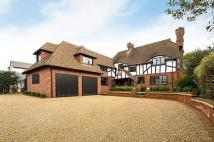5 bed Detached home in Hill Brow Bromley BR1