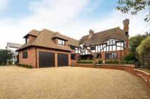 Detached home in Hill Brow Bromley BR1
