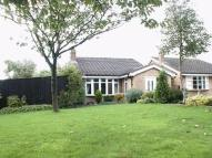2 bed Detached Bungalow in Knightley Close, Gnosall...
