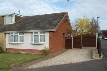 Semi-Detached Bungalow in Sedgley Road...