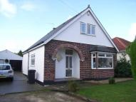 3 bed Semi-Detached Bungalow to rent in Llantarnam Road, Cwmbran,