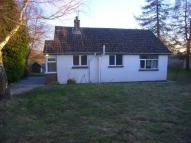 Bungalow to rent in Cefn Henllan Bungalow...