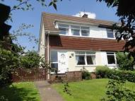Willow Green semi detached house to rent