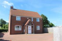 Detached property to rent in Highfield House...
