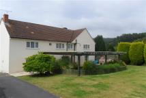 4 bed semi detached house in Synwell Lane...