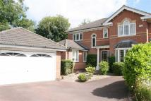 5 bed Detached property to rent in Trefoil Court...