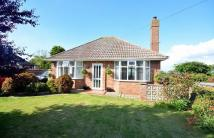 2 bed Detached Bungalow in Grange Avenue, Overstrand