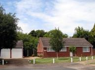 Detached Bungalow to rent in Rye Close, North Walsham