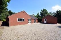 3 bed Detached Bungalow in Meadow Close, Holt
