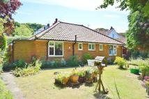 Arbor Road Detached Bungalow for sale