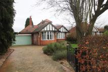 Detached Bungalow for sale in Selby Lane, Keyworth...