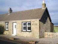 1 bedroom Semi-Detached Bungalow to rent in Westerhill Cottages...