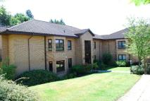 Flat to rent in 133 Henderland Road...
