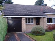 Detached Bungalow in 21 Glenorchill View...