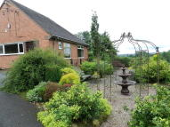 Detached Bungalow in Gratton Lane, Gratton...