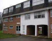 Flat to rent in GRASMERE WAY