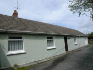 2 bed Detached Bungalow in Newport
