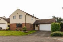 Pear Tree Avenue Detached property for sale