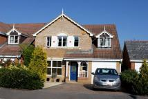 5 bedroom Detached home to rent in Amey Gardens, Totton