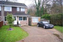 3 bed semi detached house to rent in Pine View Close...