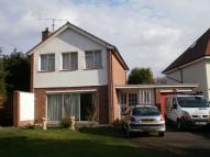 House Share in Kimbolton Road, Bedford...