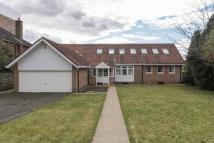 5 bed Detached Bungalow for sale in Montagu Avenue...
