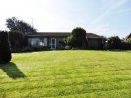 Detached Bungalow for sale in Alnwick, NE66