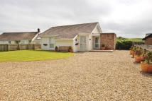 3 bed Detached Bungalow in The Wamses, Beadnell...