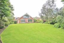 Detached Bungalow for sale in Monmouth Court, NE61