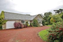 4 bed Detached Bungalow in Ashcroft, Snitter...