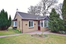 North Meadow Detached Bungalow for sale