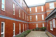 Bower Terrace House Share