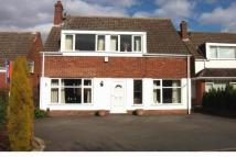 Detached property to rent in Rodway Close...
