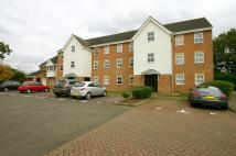 1 bedroom Ground Flat to rent in Osprey Road...