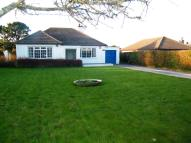 Bungalow in Paynters Lane, Redruth...