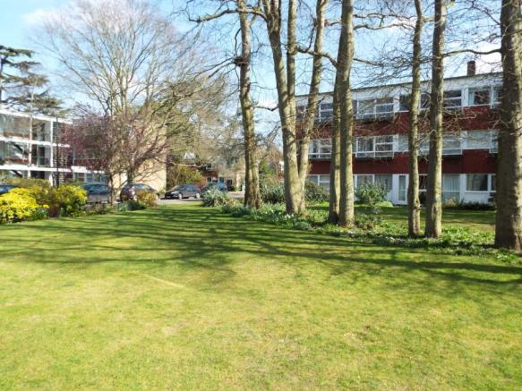 Communal Lawn