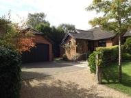 Bungalow for sale in Old Cottage Close...