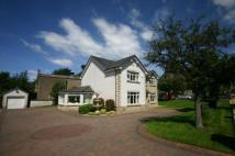 4 bed Detached property for sale in Crompton Avenue...
