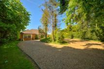 4 bed Bungalow for sale in Old Watling Street...