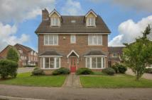 Detached property for sale in Daffodil Close, Hatfield...