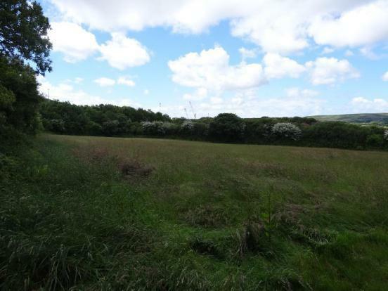 Adjoining Field