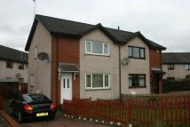 2 bedroom semi detached house for sale in Hirst Crescent, Fallin...