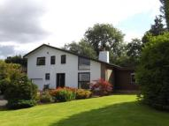 Old Sauchie Detached house for sale