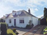 3 bed semi detached house in McLachlan Avenue...