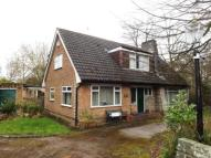 Bungalow for sale in Bell Lane, Thelwall...