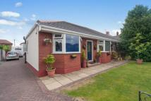 Bungalow for sale in Albert Road, Grappenhall...